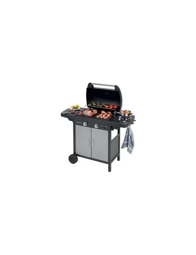 "BARBECUE A GAS ""2 SERIES CLASSIC"" EXS VARIO"